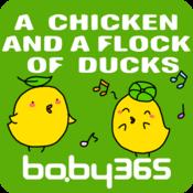 麦粒认知绘本-一只小鸡和一群小鸭-baby365